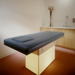 Custom Massage Table with Lighted Pedestal